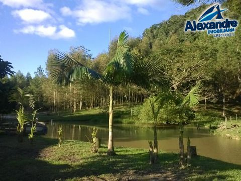 Rural em Área Rural de Jaraguá do Sul - Jaraguá do Sul
