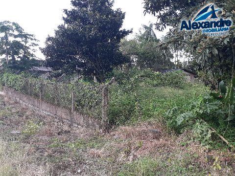 Terreno em Ilha da Figueira - Guaramirim