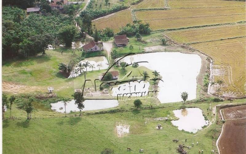 Rural bairro Rio Branco
