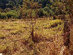 Terreno Recanto dos Pássaros- Itatiba