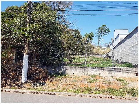 Lindo lote no Jardim dos Pinheiros, topografia em aclive. 400m²