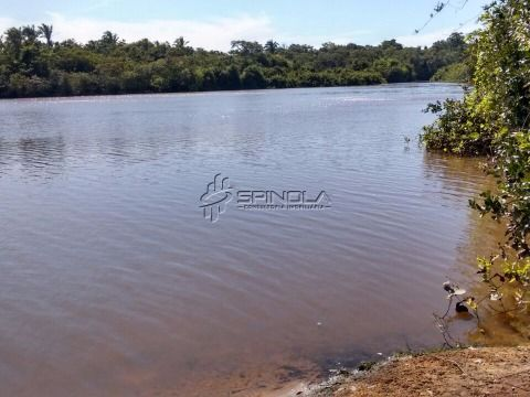 Fazenda à venda com 18mil hectares em Goiatins - Tocantins
