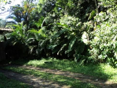 Terreno em Camburi Cacau - São Sebastião
