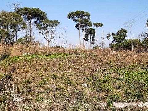 Terreno a prazo em São Jose dos Pinhais