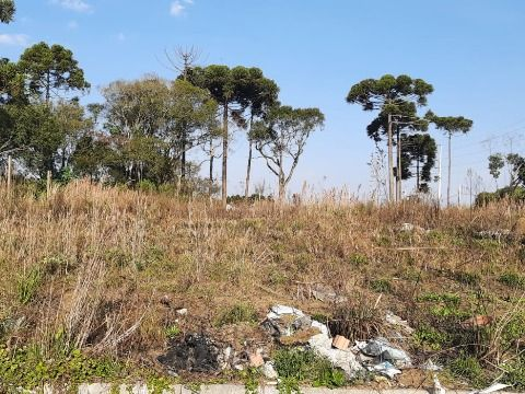 Terreno a prazo em São Jose dos Pinhais - Q.03 L.03