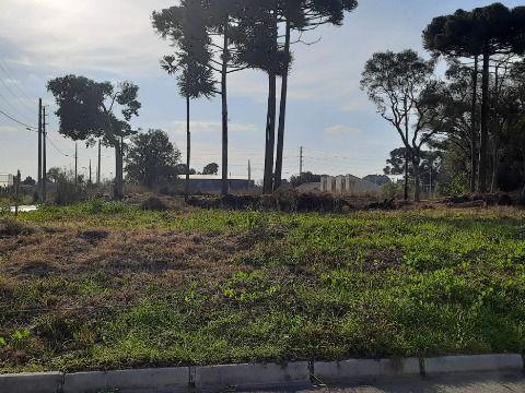 Terreno a prazo em São Jose dos Pinhais - Q. 03 L.12