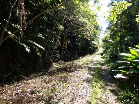 Chácara - Braço do Norte, Massaranduba