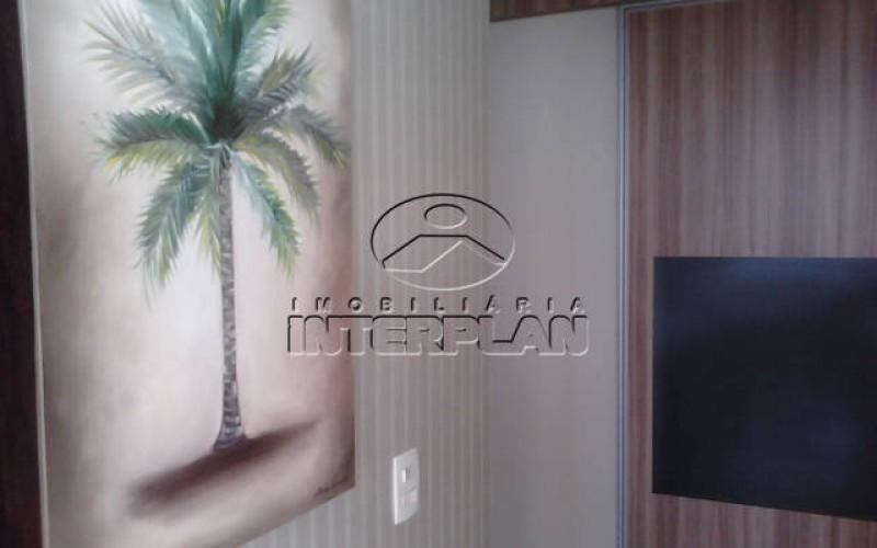 IMG10009 - Cópia (3)