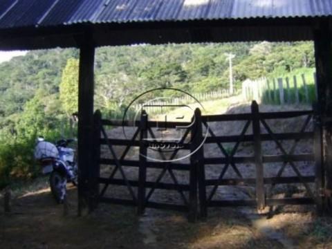 Chácara em Marau/BA - Camamu