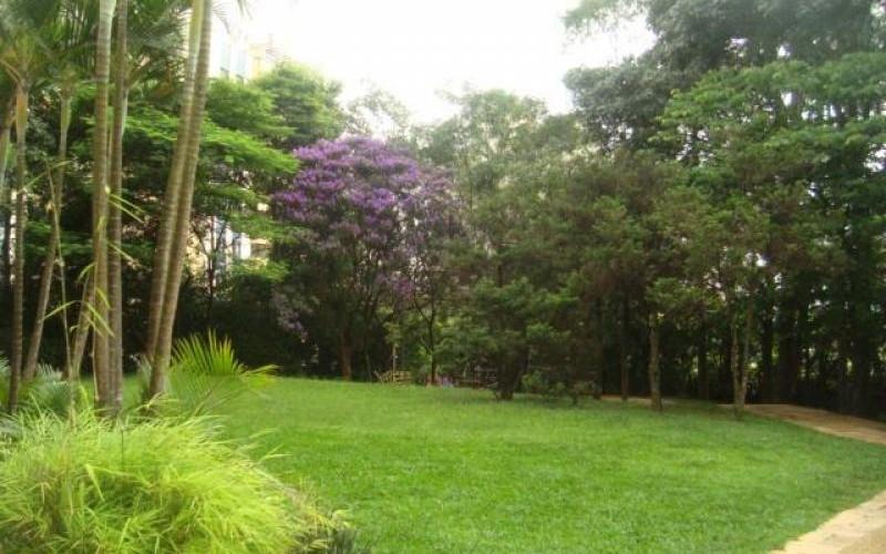 Ótimo apartamento residencial para locação, Morumbi, São Paulo - AP1536.