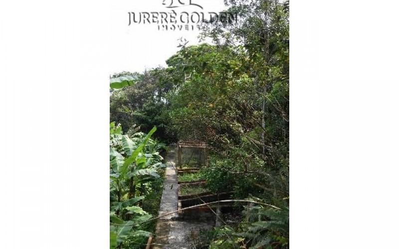 Natureza preservada 5