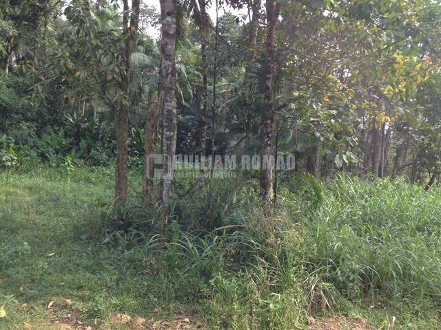 Terreno em Corupá bairro Ano Bom