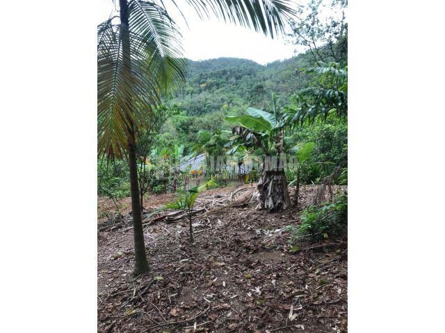 Excelente Sobrado bairro Seminario em Corupá-SC