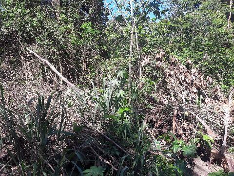 terreno em Itaipuaçu- Itaocaia Valley 2000m² - R$ 170 mil