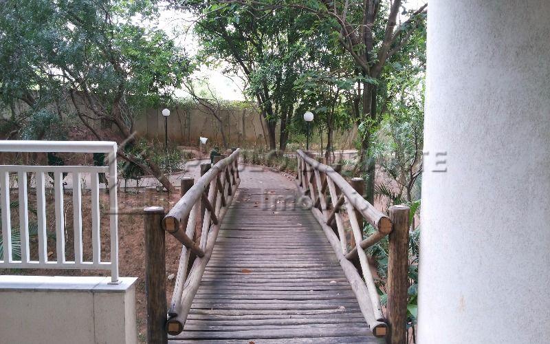 8 ponte