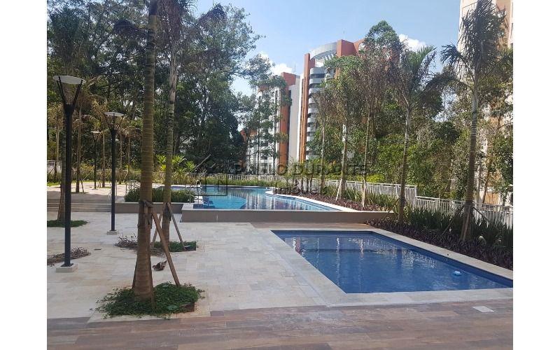 terreo piscina