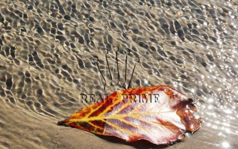 Propriedade Paradisíaca de Frente Para o Mar! - Foto 46