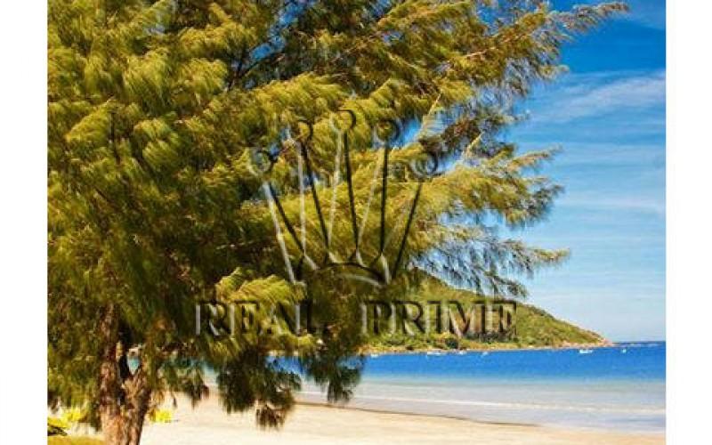 Propriedade Paradisíaca de Frente Para o Mar! - Foto 3