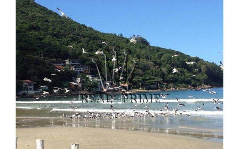 Propriedade Paradisíaca de Frente Para o Mar! - Foto 23