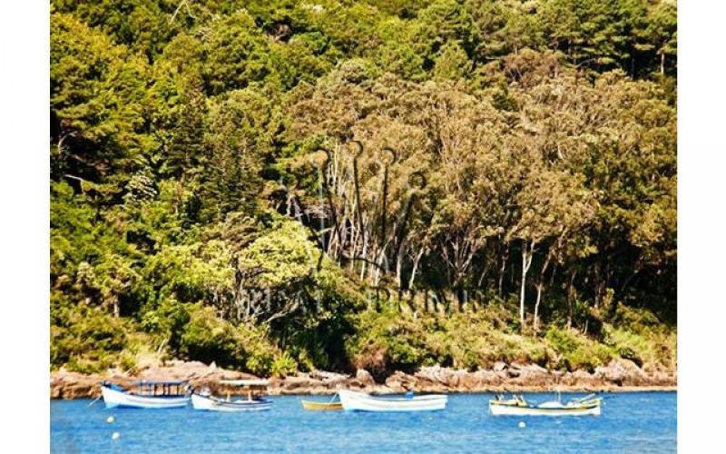 Propriedade Paradisíaca de Frente Para o Mar! - Foto 27
