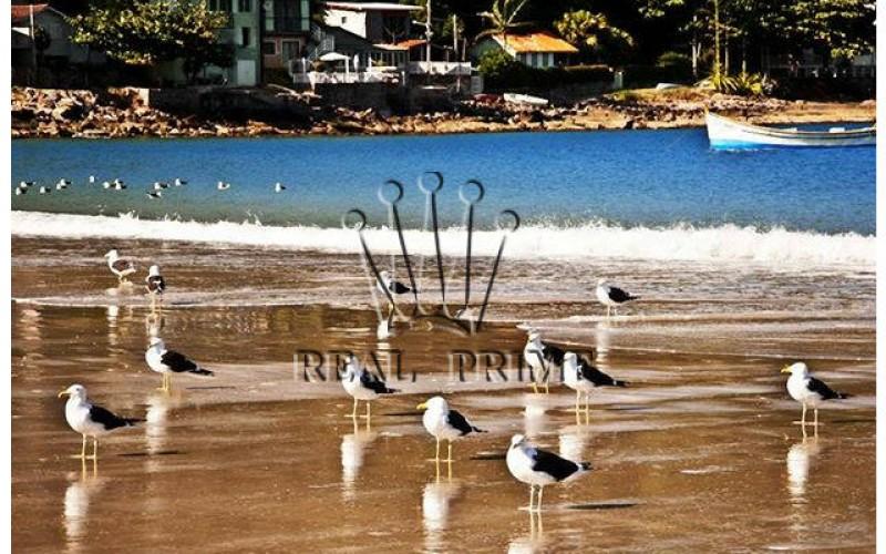 Propriedade Paradisíaca de Frente Para o Mar! - Foto 31