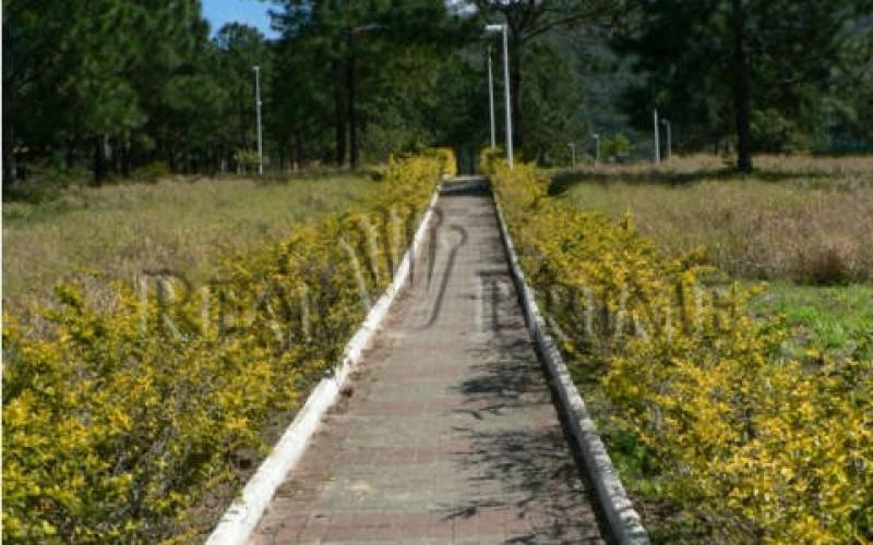 Lindo Terreno á Venda no Condomínio Marina Philippi na Lagoa da - Foto 16
