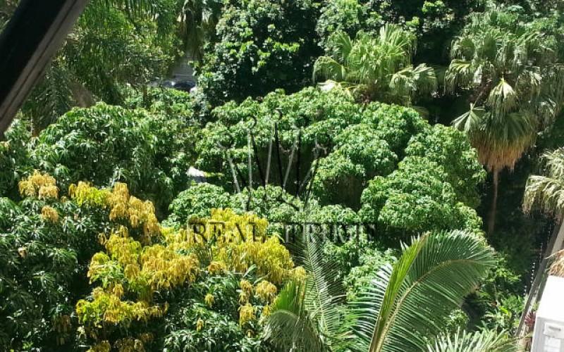 Apartamento 4 Dormitórios na Av. Beira Mar Norte - Foto 13