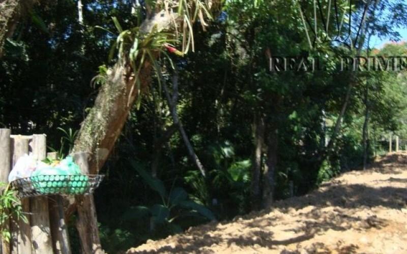Terreno / Sítio em Bairro Nobre - Foto 5