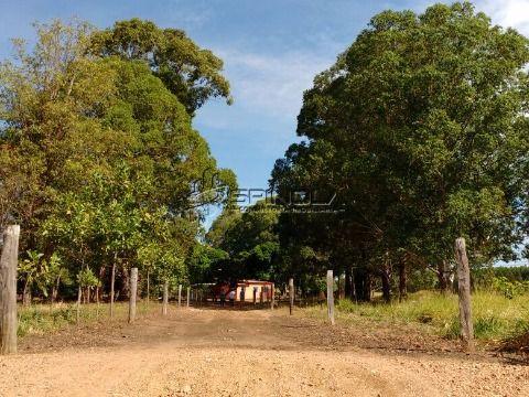 Fazenda em Niquelândia, Goiás