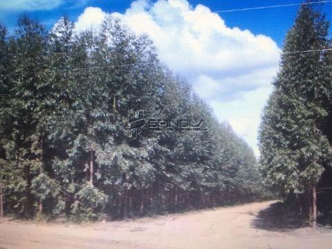 Fazenda com 6299 hectares em Bonito de Minas Minas Gerais