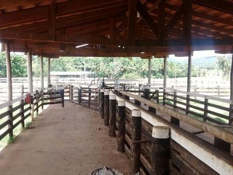 Fazenda 350 alqueires goianos em Aruanã GO