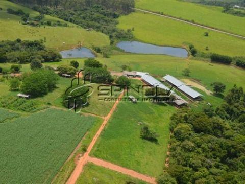 Fazenda com 650 hectares produzindo leite em Minduri MG