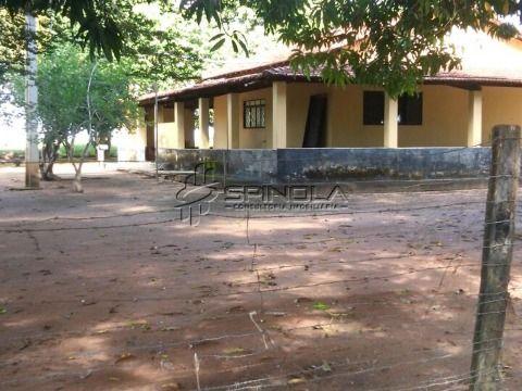 Fazenda 190 alqueires em Jaú do Tocantins TO