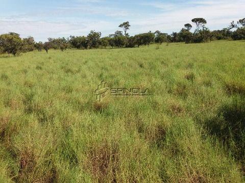 Fazenda com 1.000 alqueires em Santana do Araguaia PA