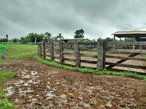 Fazenda em Maracaju-MS de 904 há em pasto, mas que pode virar lavoura! Terra roxa e argilosa!