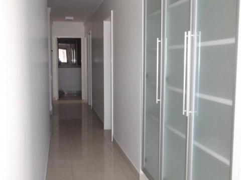 Cambui- 1 apartamento por Andar - 380m²