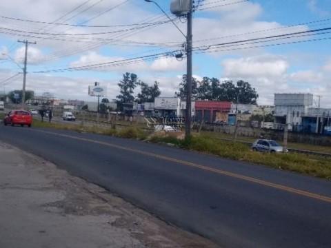 Galpões com Pé direito de 7m - De Frente Para Rodovia Santos Dumont