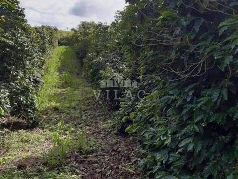 Fazenda 200 hectares em São Pedro da União/MG (próximo a Guaxupé)