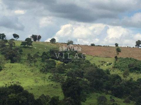 Fazenda com 30 hectares em Jacuí/MG